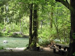 sol duc river in background